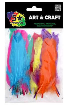 FEATHERS COLOURED LARGE 25PC
