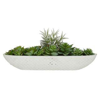 Succulents In White Cer Boat 45.5x19cm