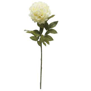 Peony Full Bloom Stem 73cm- Ivory