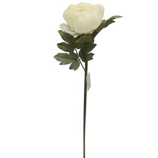 Peony Single Stem 72cm- Ivory