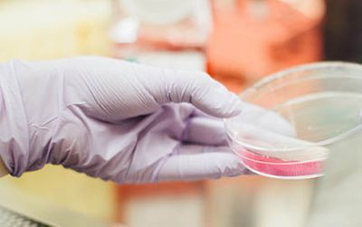 Leading the way with antimicrobial protection