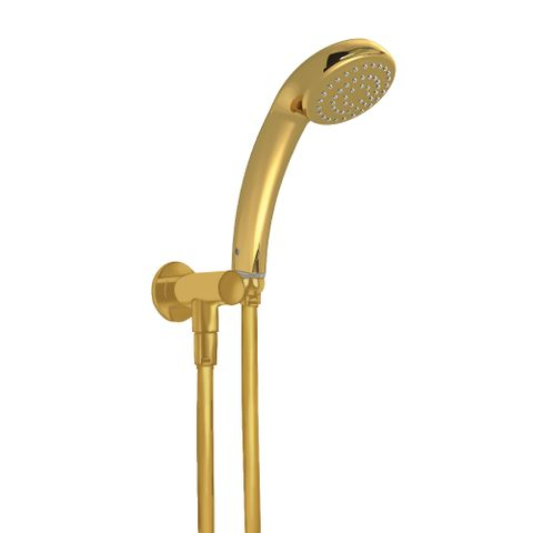 Princess Handheld Shower - Gold