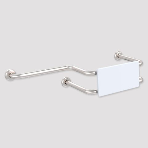 CF Toilet Backrest with ext Wall Mount SS