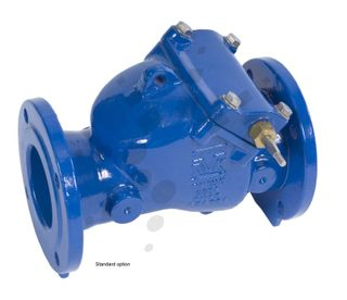 Single Check Valves