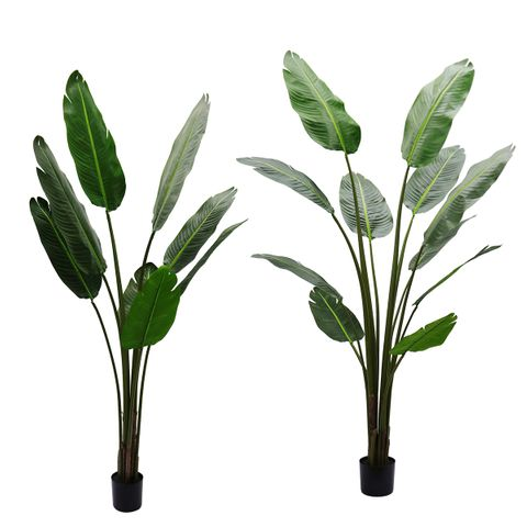 Strelitzia Artificial Tree Range