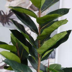 Rubber Artificial Tree Range