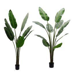 Strelitzia Artificial Tree Range