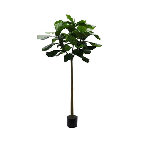 Fiddle Leaf Artificial Tree - 180cm