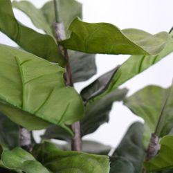 Fiddle Leaf Artificial Tree - 180cm