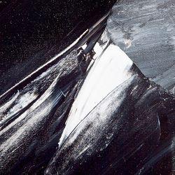 Black Wonder Oil On Canvas Painting