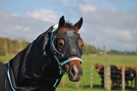 Equilume Mask Rechargeable-HACK