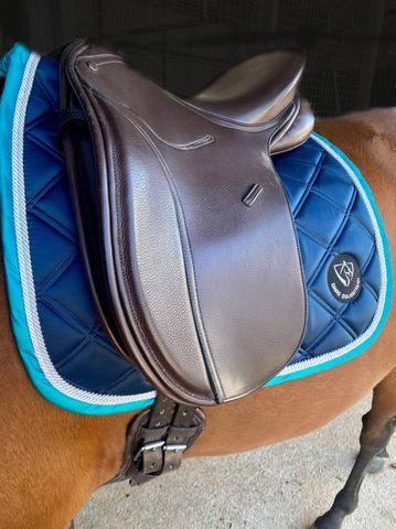 Bare  Horse accessories