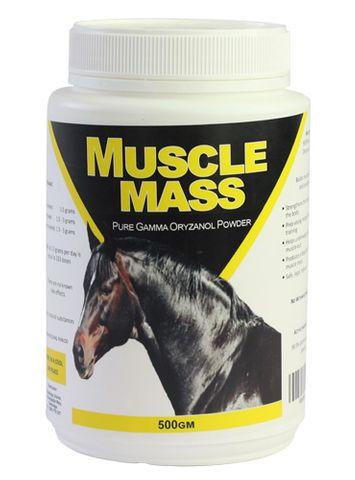 Muscle Mass 250gm