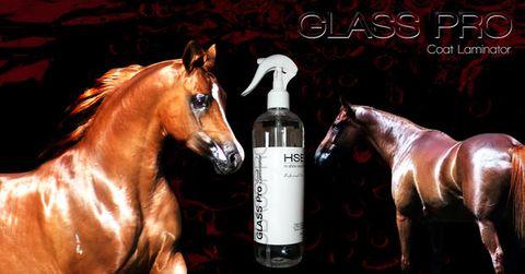 HSE Glass Pro Coat Laminator 500ml