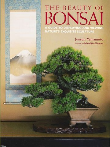 Beauty of Bonsai