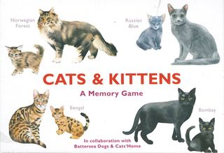 Cats & Kittens: A Memory Game
