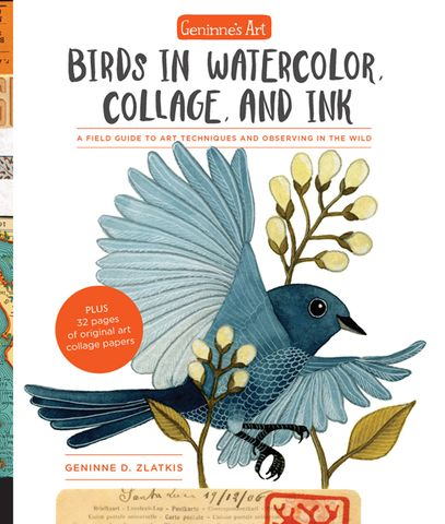 Birds in Watercolor, Collage, and Ink
