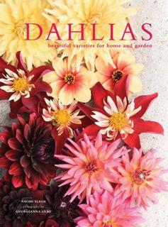 Dahlias