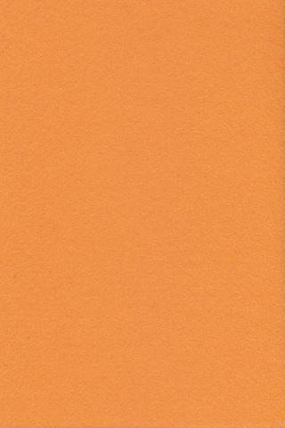 Pure Wool Felt - Apricot
