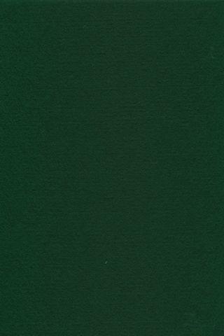 Pure Wool Felt - Billiard Green