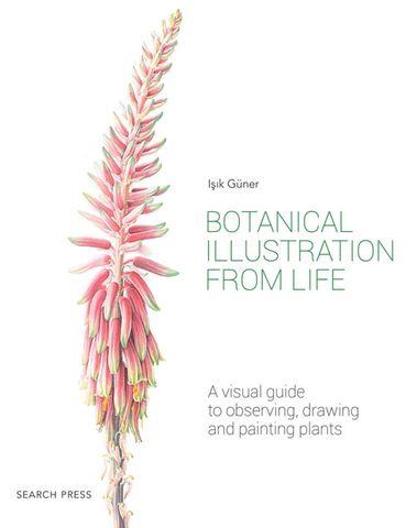 Botanical Illustration from Life