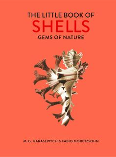 Little Book of Shells