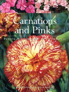 Carnations & Pinks