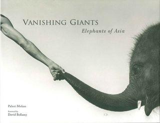 Vanishing Giants