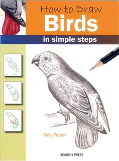 How to Draw: Birds in Simple Steps