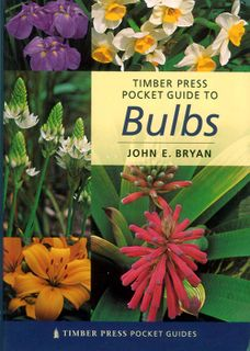 Pocket Guide to Bulbs