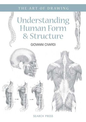 The Art of Drawing: Understanding Human Form & Structure