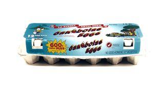 Eggs Canobolas 600g (15)