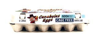Eggs Cage Free 600g 12pk (15)