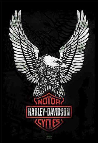 Tin Sign 30x20 Harley