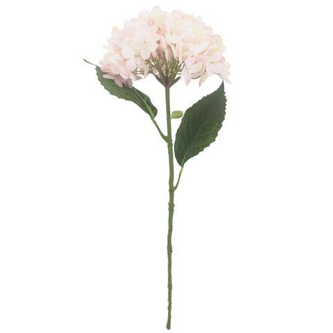 Hydrangeas in Pink 16x56cm