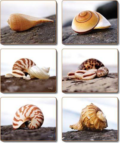 Placemats Seashells 36.5x27.5 cm