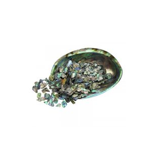 Paua shell pieces 2-15mm (30g)