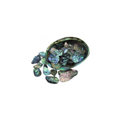 Paua shell pieces 15-40mm (30g)