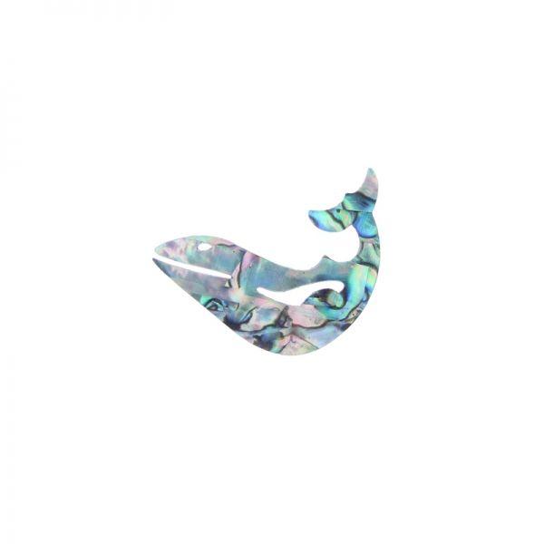 Paua Whale