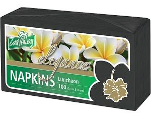 2ply BLACK LUNCH NAPKIN x 100 (10)
