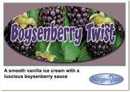 BOYSENBERRY SCOOP NVAAZ x 5lt