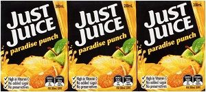 JUST JUICE PARADISE PUNCH NAS 200ml x 24