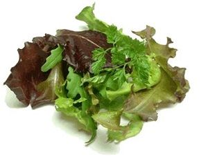 LETTUCE SALAD MIX ( MESCULIN ) x 100g PACKET