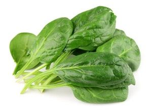 SPINACH BABY x 100g TRAY