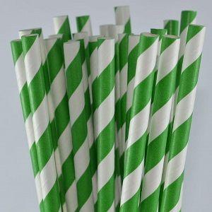 GREEN WHITE STRIPE STRAWS FFRIENDLY x 250 (10)