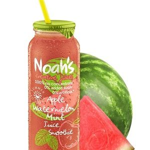 NOAHS APPLE WATERMELON MINT JUICE 12x260ml