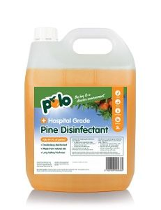 5lt PINE DISINFECTANT POLO (4)