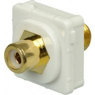 CERTECH RCA-F Connector for Australian Style Wall Plates, White