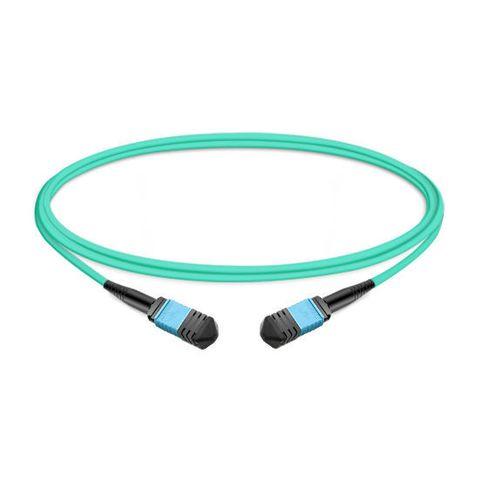 CERTECH 12 Core OM4, Female to Female MPO Cable, 1m