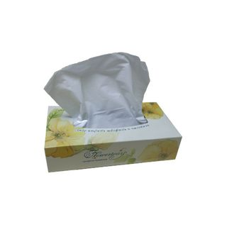BOUTIQUE KEATISSUE RECTANGLE WHITE 2 PLY F/TISSUE 100S